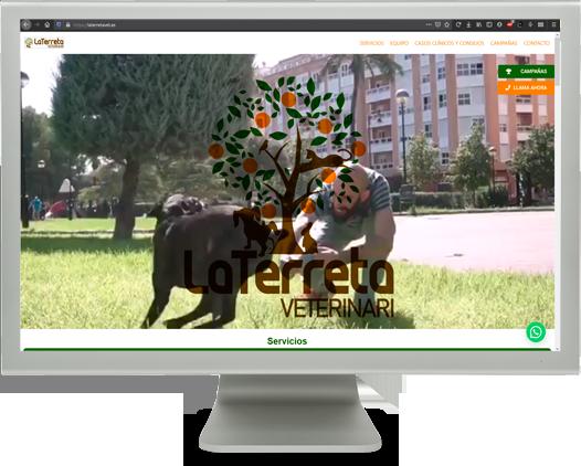 diseño web veterinario