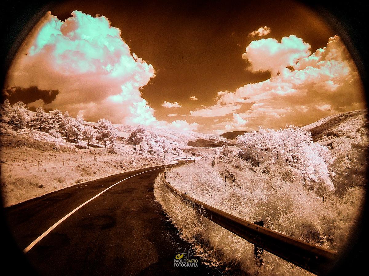 fotografía-infrarrojo